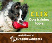 Doggie Gadgets Training Tools Clix